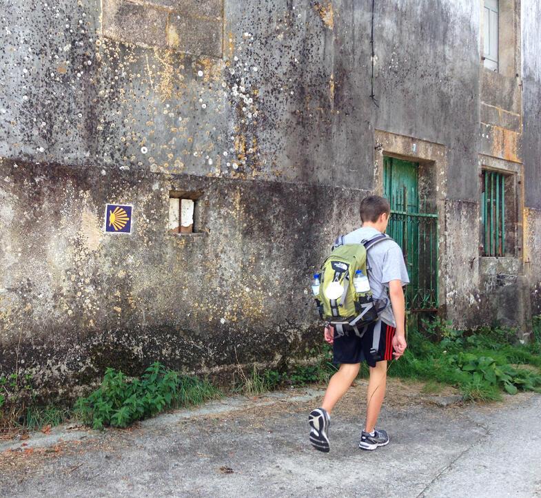Proctor en Segovia experiential education walking the Camino de Santiago