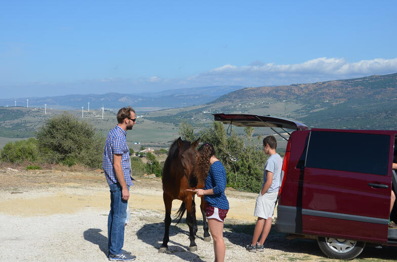 Students experience a vision of rural Andalucía