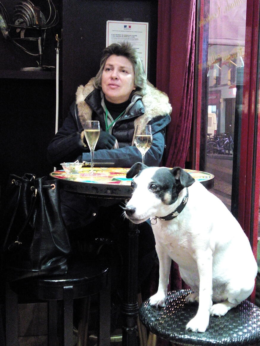 paris dogs european art classroom proctor academy new hampshire aix en provence france
