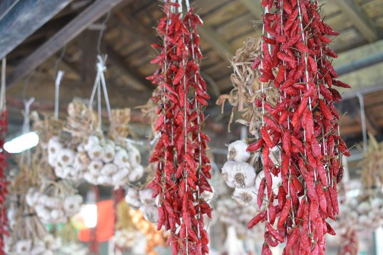 Proctor en Segovia visits outdoor market in Porto