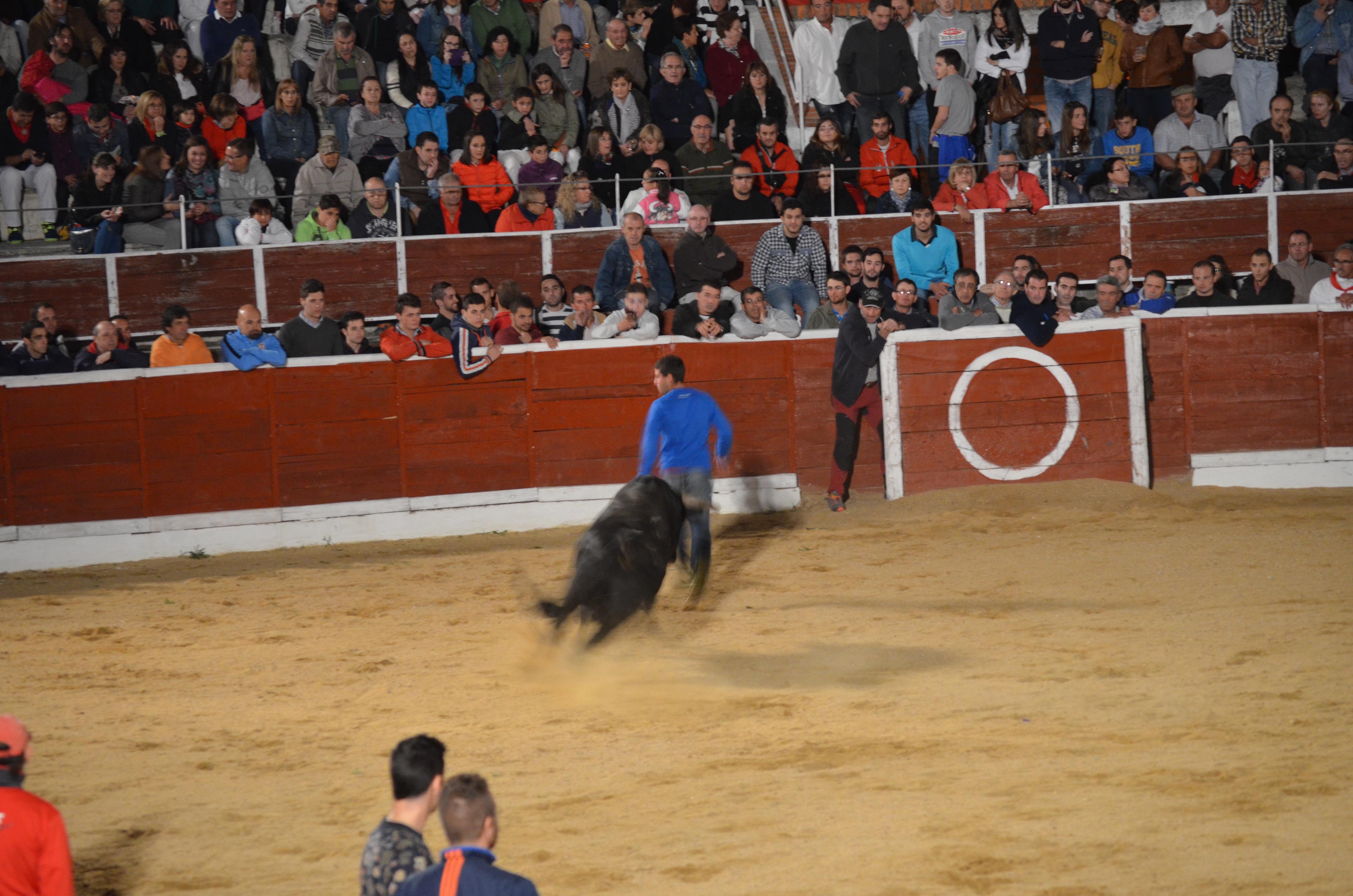 Proctor en Segovia visits Nieva