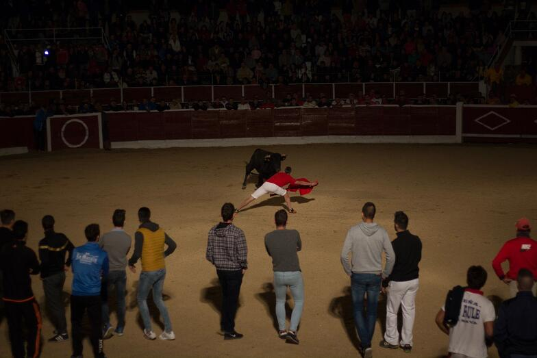 Proctor en Segovia watches a running of the bulls