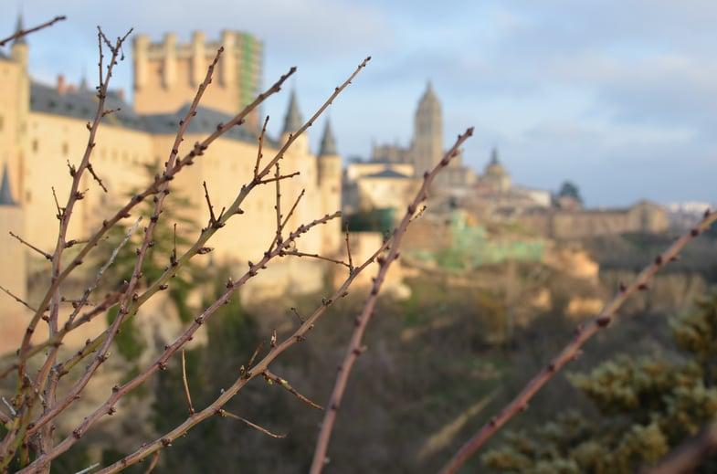 Proctor en Segovia photography afternoon activity walk