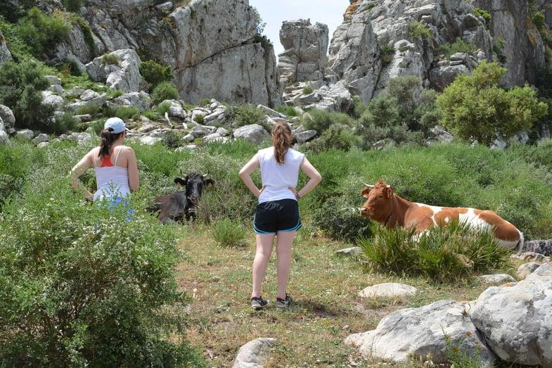 Proctor en Segovia hiking near Tarifa