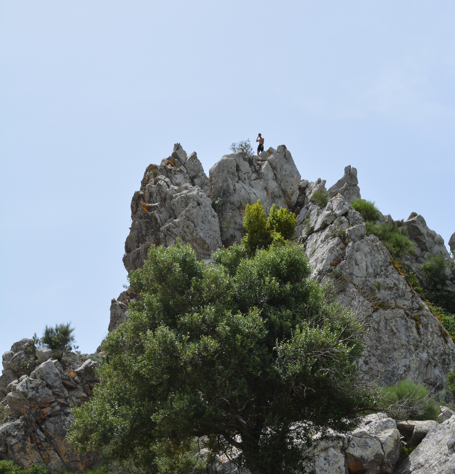 Proctor en Segovia near Tarifa