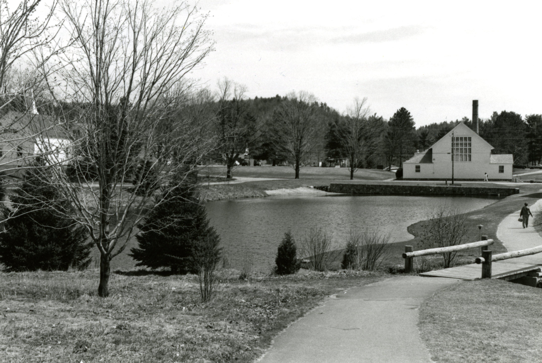 Pond 80s
