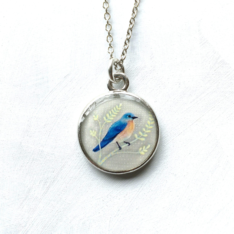 bluebird NS1.jpg