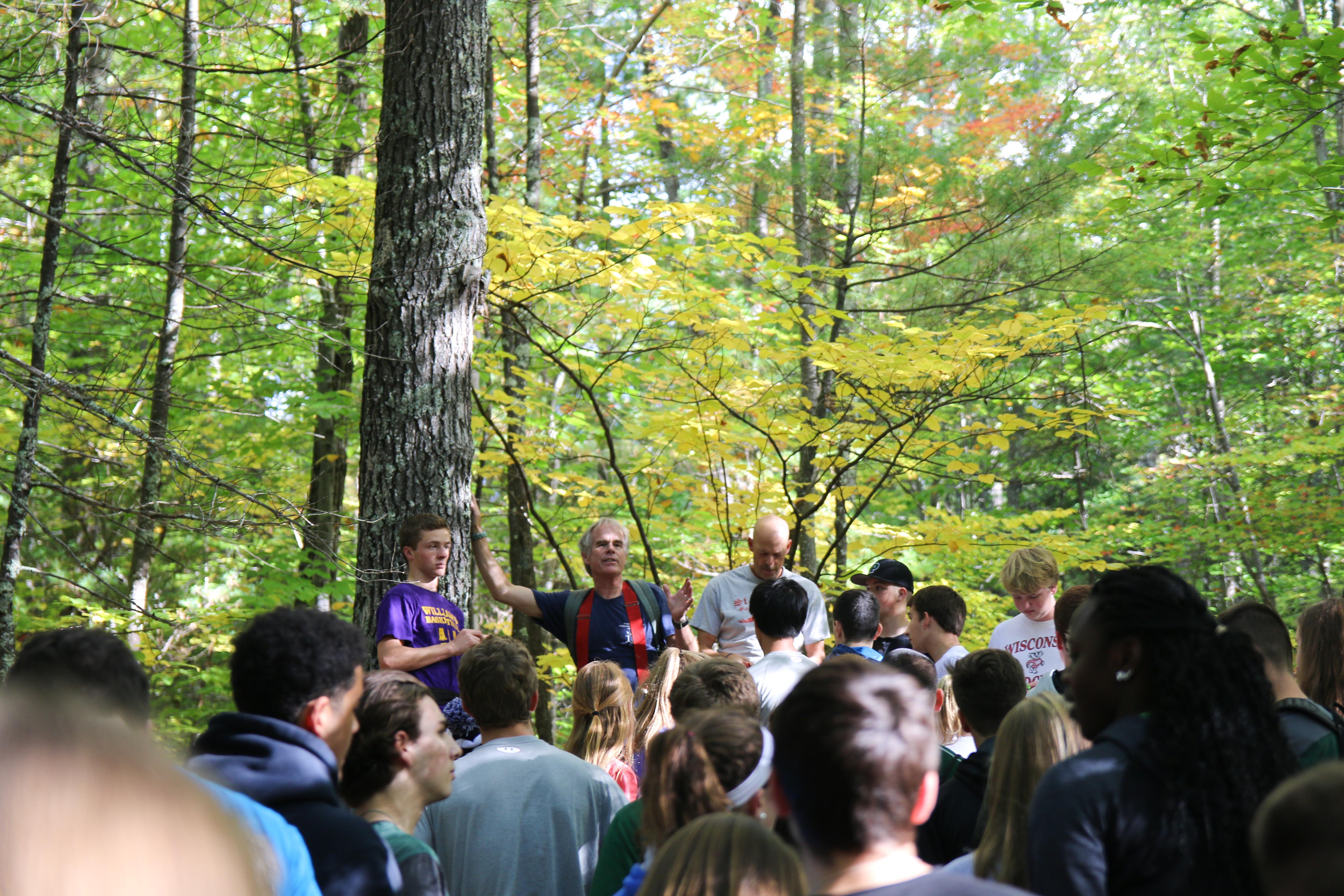 Proctor Academy woodlands