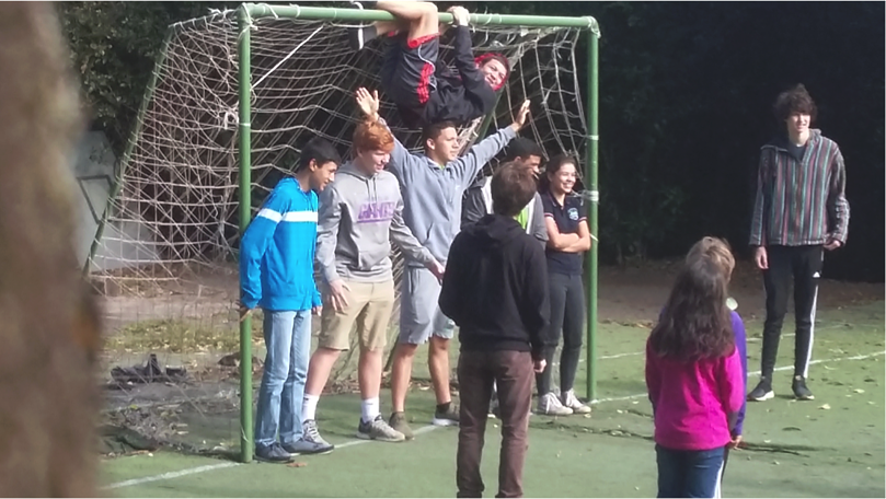 Soccer Goal.png
