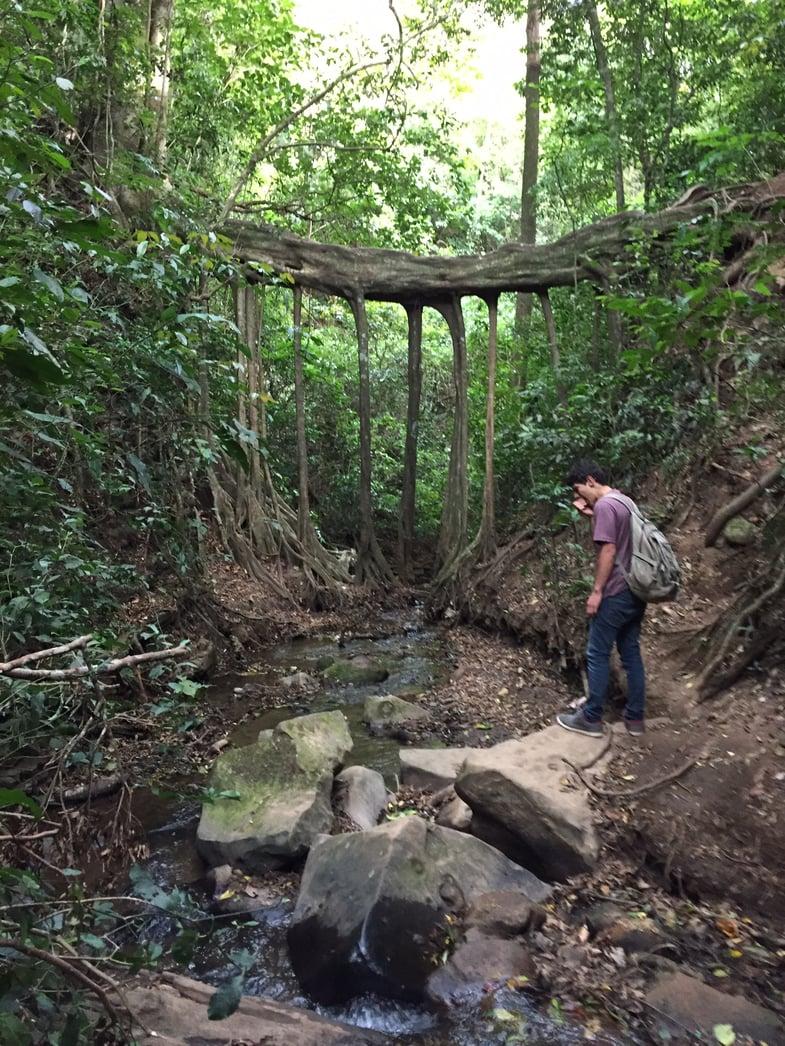 Proctor in Costa Rica