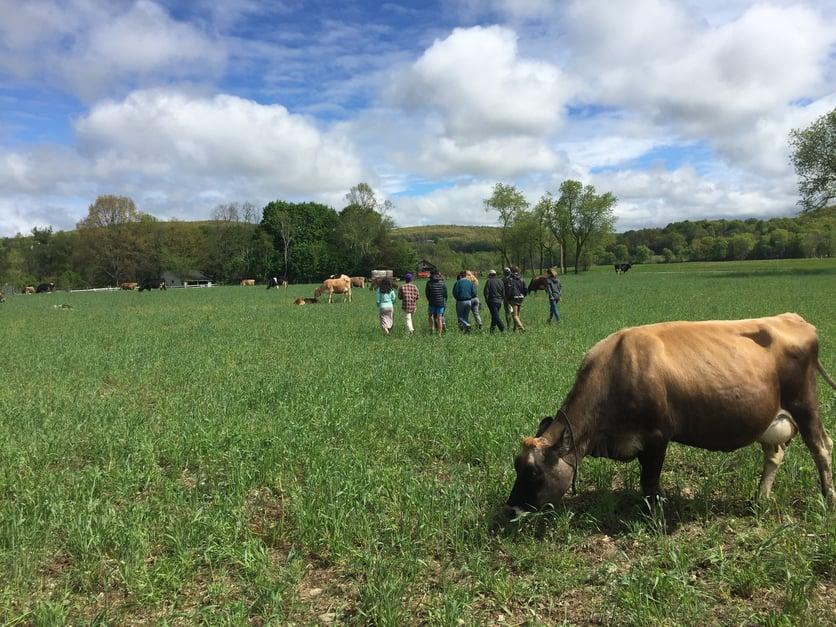 7_NY_Visiting Chaseholm Dairy 2.jpg