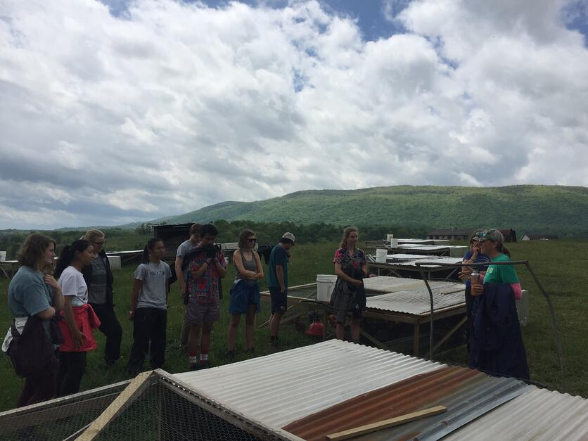 7_WV_Learning about Chicken Tractors at Polyface Farm.jpg