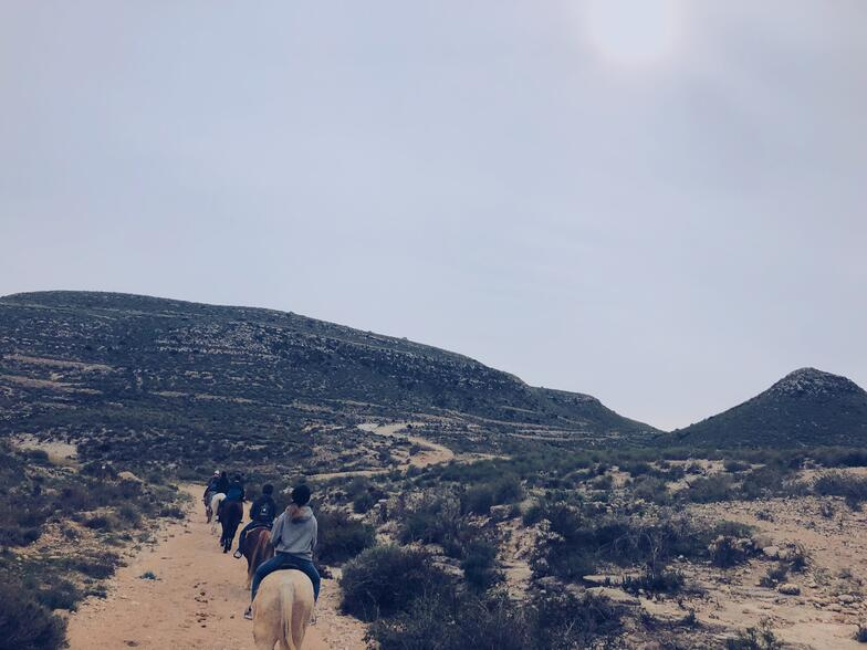 Proctor en Segovia horseback riding in Cabo de Gata national park