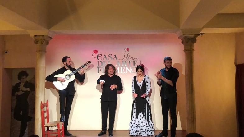 Proctor en Segovia students attended a flamenco performance.