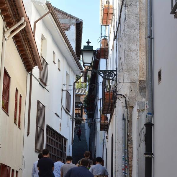 Proctor en Segovia explores the Albaicín