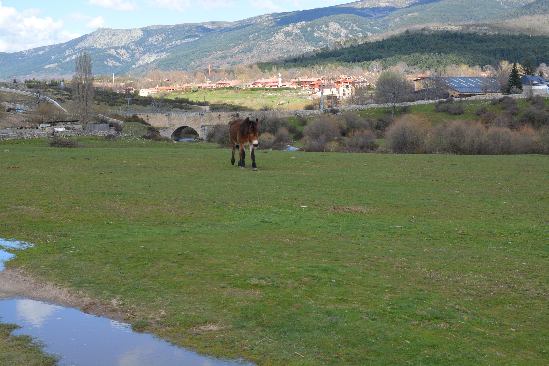 Proctor en Segovia Proctor Academy Off-Campus Program Experiential Learning High School