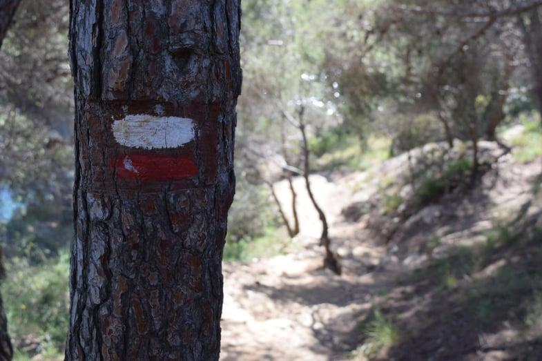 Proctor en Segovia hikes along the Catalan coast near Cadaques
