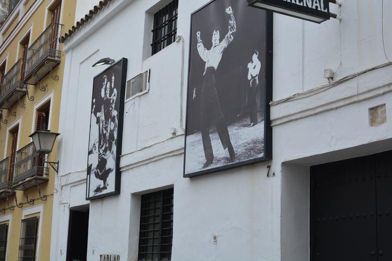 Proctor en Segovia watches flamenco in Sevilla