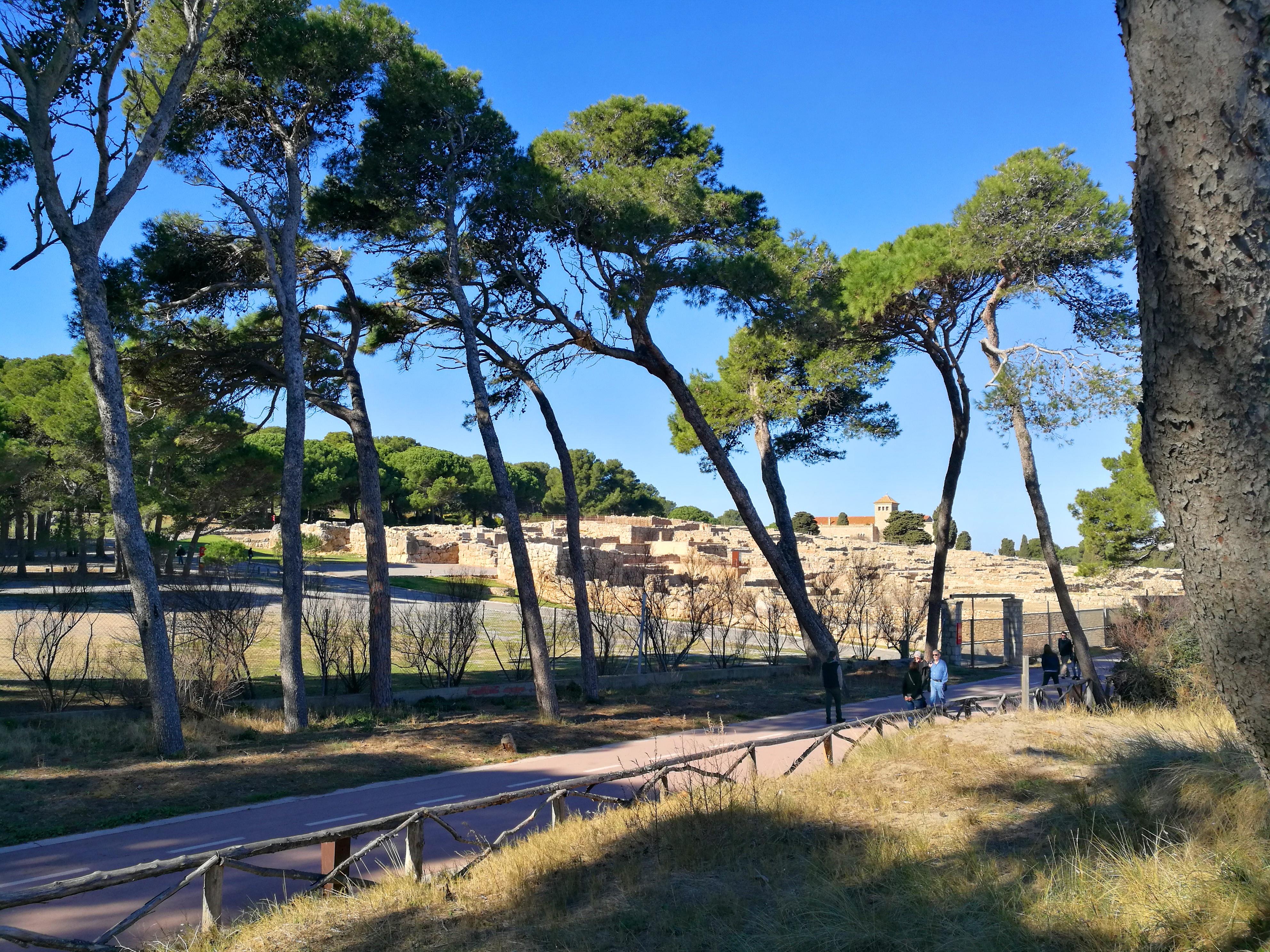 Proctor en Segovia visits the Greek ruins of Empuries