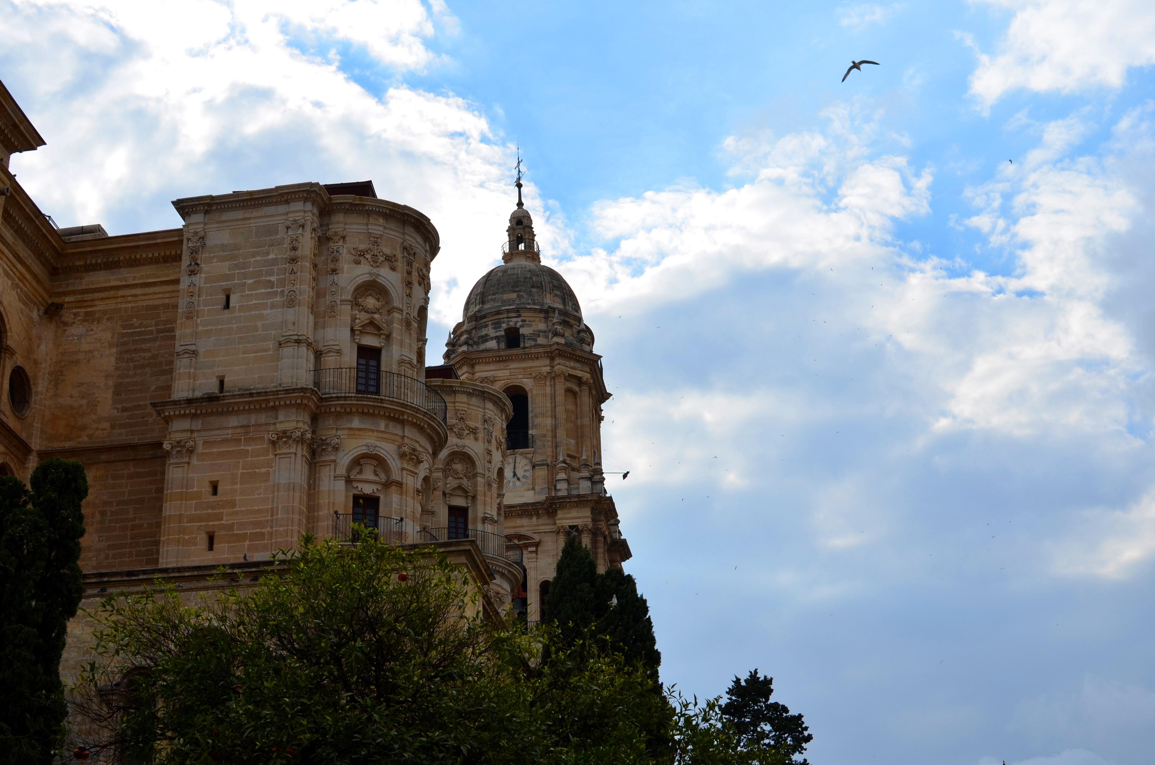 Proctor en Segovia visits the Cathedral of Málaga